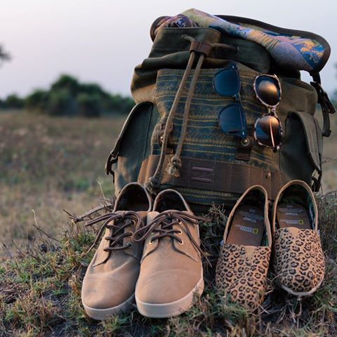 Partnership between TOMS and National Geographic Big Cats Initiative